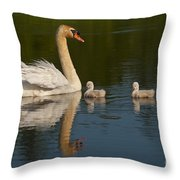 Mute Swan Pictures 244 Throw Pillow