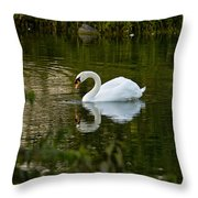 Mute Swan Pictures 85 Throw Pillow