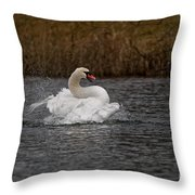 Mute Swan Pictures 97 Throw Pillow