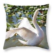 Mute Swan Wings Throw Pillow