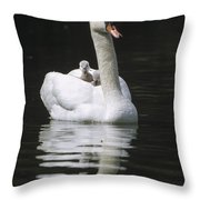Mute Swan With Chicks On Back Throw Pillow