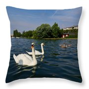 Mute Swans. Lago Di Iseo Throw Pillow