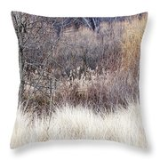 Muted Colors Of Winter Forest Throw Pillow