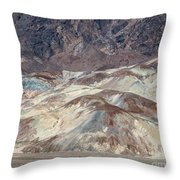 Muted Throw Pillow