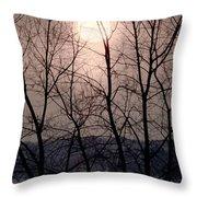 Muted Sunrise Throw Pillow