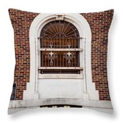 Mutual Aid Historic Bluilding Throw Pillow