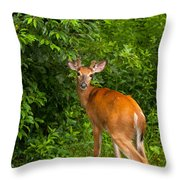Mutual Respect Throw Pillow