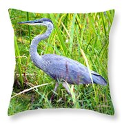 My Blue Heron Throw Pillow by Greg Fortier