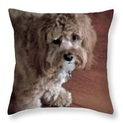 My Boy Charley Throw Pillow