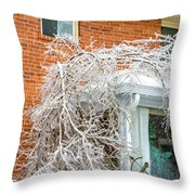 My Confused Backyard Throw Pillow
