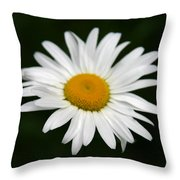 My Daisy Throw Pillow