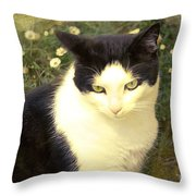 My Days In The Sun ... Throw Pillow