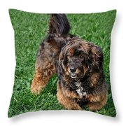 My Dog Corkie Throw Pillow