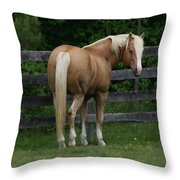 My Dream Horse Throw Pillow