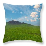 My Earth Our Earth... Throw Pillow