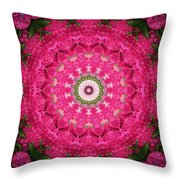 My Effects 11 Throw Pillow