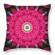 My Effects 12 Throw Pillow