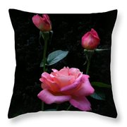 My Evening Delight Throw Pillow