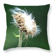 My Face To The Wind Throw Pillow