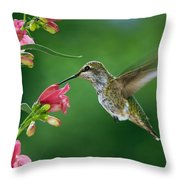 My Favorite Flowers Throw Pillow