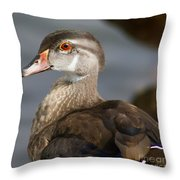 My Feather Friend - Wood Duck Throw Pillow