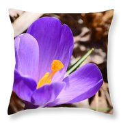 My First Bloom Of 2013 Throw Pillow