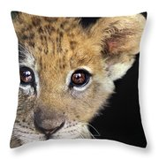 My Grandma What Big Eyes You Have African Lion Cub Wildlife Rescue Throw Pillow