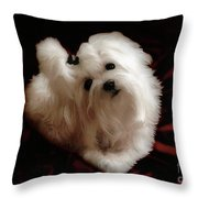 My Heart My Muse Throw Pillow
