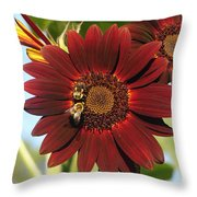 My Honey And Me Throw Pillow