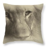 My Lion Eyes In Antique Throw Pillow