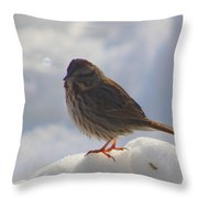 My Little Sparrow Throw Pillow