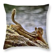 My Morning Stretch Throw Pillow