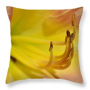 My Name Is Lily Throw Pillow