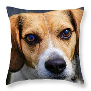 My Name Is Moose Throw Pillow