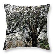 My Neighborhood In Spring Throw Pillow