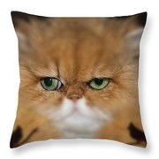 My Old Friends Throw Pillow