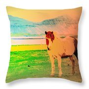An Old Icelandic Mare, What Is Going On Inside Of Her  Throw Pillow