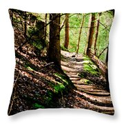 My Path Throw Pillow