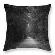 My Pathway Throw Pillow