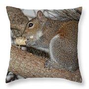 My Peanut Throw Pillow