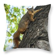 My Peanut Throw Pillow by Robert Bales