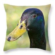 My Pond Buddy Throw Pillow