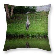 My Reflection - Heron Throw Pillow