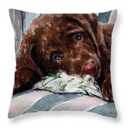 My Rope Toy Throw Pillow