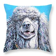 My Standard Of Excellence Throw Pillow