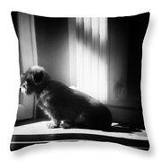 My Thoughtfull Dog Throw Pillow