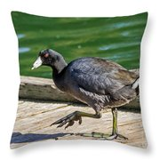 My What Big Feet You Have Throw Pillow