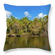 Myakka River From Jelks Preserve Throw Pillow