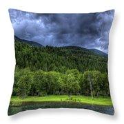 Myrtle Creek 1 Throw Pillow