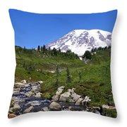 Myrtle Creek Throw Pillow
